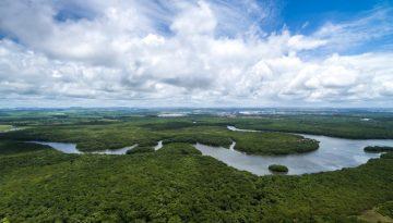 Amazônia3