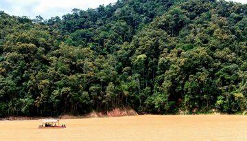 Amazônia4
