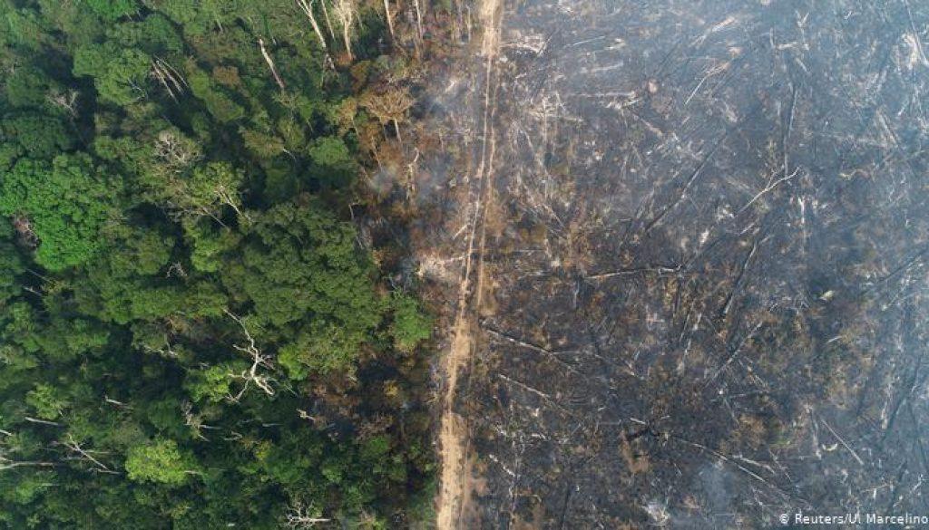 Amazônia5