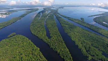 Amazônia6