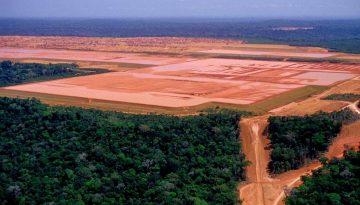 AmazôniaFundo