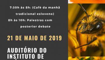 Dia Mundial das abelhas UnB 2019 Final 1