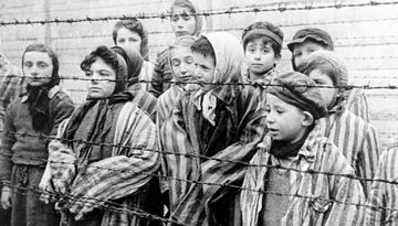 Holocausto11