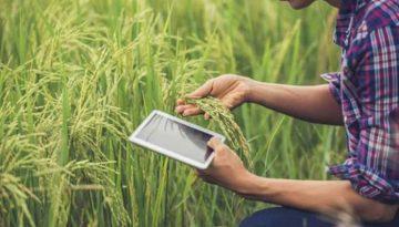 Inovações-tecnológicas-startups-ajudam-o-Brasil-a-se-tornar-uma-potência-no-agronegócio