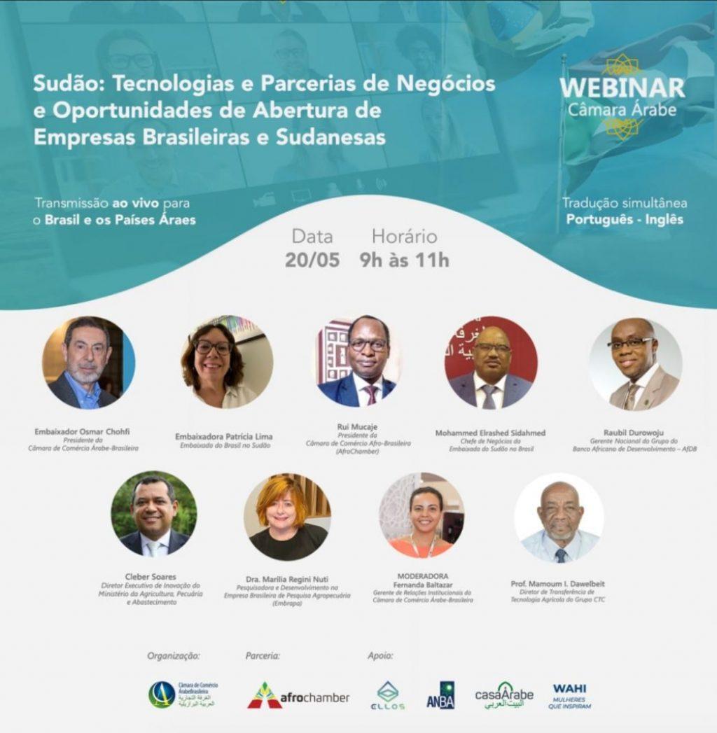 WebinarSudão